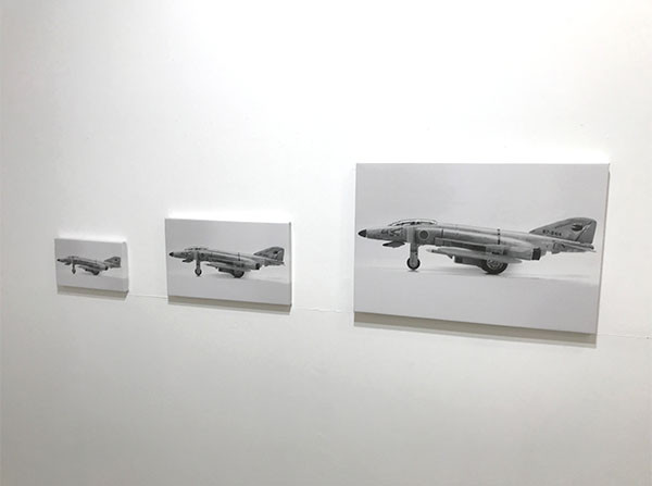 Phantom Scales キャンバスにデジタルプリント サイズ可変 (撮影協力:和田高広) Print on canvas, Size Variable 2018 (Photography : Takahiro Wada)